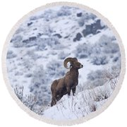 Winter Ram Round Beach Towel