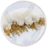 Winter Reed Under Snow Round Beach Towel