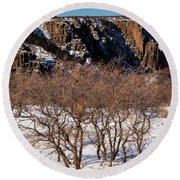 Winter Sprouts Round Beach Towel