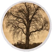 Winter Tree - Old Round Beach Towel
