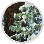 Winter Tree Sierra Nevada Mts Ca Usa Round Beach Towel