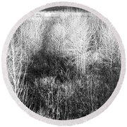 Winter Trees B And W 5 Round Beach Towel