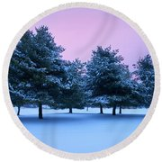 Winter Trees Round Beach Towel by Brian Jannsen
