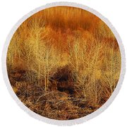 Winter Trees Color 3 Round Beach Towel