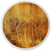 Winter Trees Color 4 Round Beach Towel