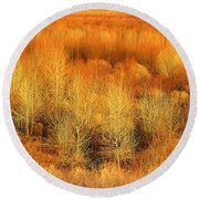 Winter Trees Color  7 Round Beach Towel