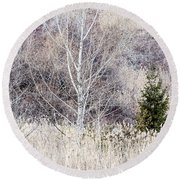 Winter Woodland With Subdued Colors Round Beach Towel