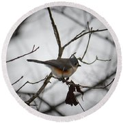 Winter's Tufted Titmouse Round Beach Towel