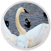 Winter's White Swan Round Beach Towel