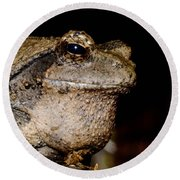 Wise Old Frog Round Beach Towel