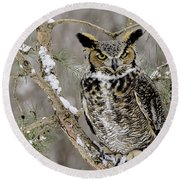 Wise Old Great Horned Owl Round Beach Towel