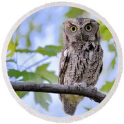 Wise Old Owl Round Beach Towel