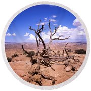 Withered Tree Paria Canyon Round Beach Towel