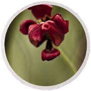 Withered Tulip Round Beach Towel