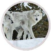 Wolf - Friend Round Beach Towel