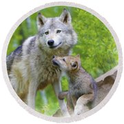 Wolf Of Minnesota Round Beach Towel