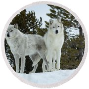 Wolves - Partners Round Beach Towel