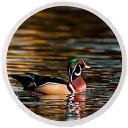 Wood Duck At Morning Round Beach Towel