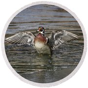 Wood Duck Drake Wing Flap Round Beach Towel