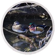 Wood Duck Reflections Round Beach Towel