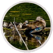 Wood Duck Rest Time Round Beach Towel