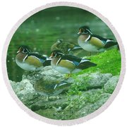 Wood Ducks Hanging Out Round Beach Towel