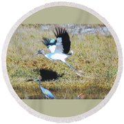 Wood Stork And Blue Heron Round Beach Towel