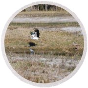 Wood Stork And Herons Round Beach Towel