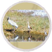 Wood Stork And Ibis And Heron Round Beach Towel