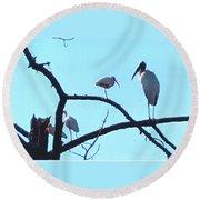 Wood Stork And Ibis Round Beach Towel