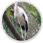 Wood Stork On A Limp Round Beach Towel
