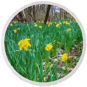 Woodland Daffodils Round Beach Towel