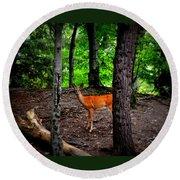 Woodland Deer Round Beach Towel