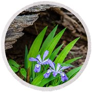 Woodland Dwarf Iris Wildflowers Round Beach Towel