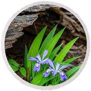 Woodland Dwarf Iris Wildflowers Round Beach Towel