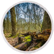 Woodland Fungi Round Beach Towel