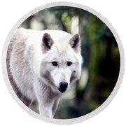 Woodland White Wolf 2 Round Beach Towel