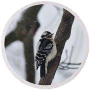 Woodpecker In Winter Round Beach Towel