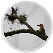 Woodpecker On Lookout Round Beach Towel