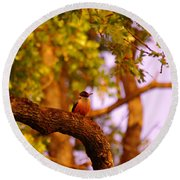 Woodpeckers Of Fort Simcoe Round Beach Towel