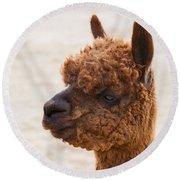 Woolly Alpaca Round Beach Towel