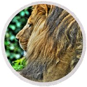 Woolly Mane Of The King   Round Beach Towel