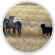 Working Sheep Round Beach Towel