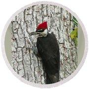 Working Woodpecker Round Beach Towel
