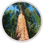 World Famous General Sherman Sequoia Tree In Sequoia National Park. Round Beach Towel