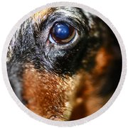 Worried Wiener Round Beach Towel