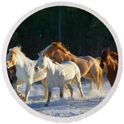 Wyoming Horses Round Beach Towel