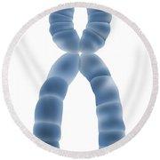 X Chromosome, Illustration Round Beach Towel