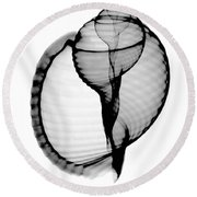 X-ray Of Scotch Bonnet Round Beach Towel