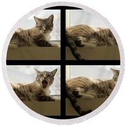 Yawn Round Beach Towel